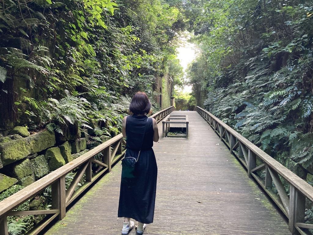 森の中の橋の上を歩いている人  中程度の精度で自動的に生成された説明